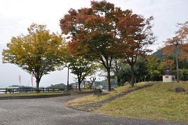 koyomaeniwa